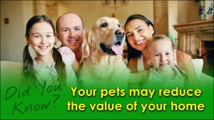 Your pets may reduce the value of your home